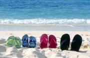 FBTO ziet toename in verkoop tijdelijke reispolissen