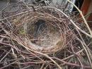 Concurrent plukt nest van verzekeraars kaal