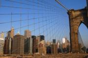 New York overdenkt volledige openheid provisies