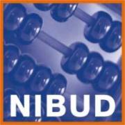 Bezoek aan Nibud.nl groeit sterk