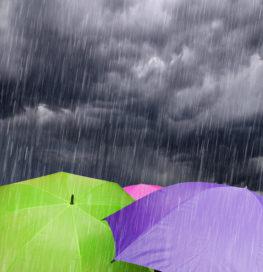 Meer schade door weer, boeren slecht verzekerd