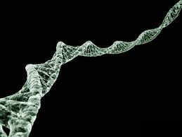 Rampendekking van vitaal belang voor life science-bedrijven