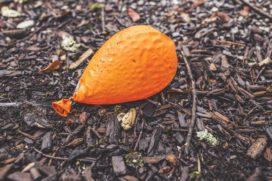 Adfiz: 'Proefballon AFM en Verbond verdient onze aandacht niet'