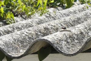 Beroep op verjaring blijft in asbestzaken mogelijk