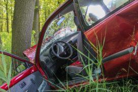 'Markt heeft ruimte voor maar twee of drie autoverzekeraars'