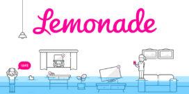 Start-up Lemonade claimt marktaandeel van ruim 25%