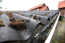 Asbestziekte: is de staat daarvoor aansprakelijk?