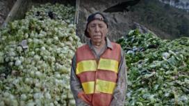 'Rabobank kan wereldvoedselprobleem niet oplossen'