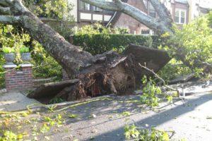 Stormschade nu al minstens € 50 miljoen