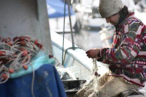 Zwitserleven investeert in duurzame vis